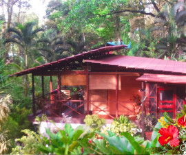 Alquiler de vacaciones Jungle Vacation Rental