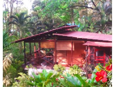 Alquiler de vacaciones Jungle Vacation Rental