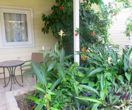 Bocas Town Garden Cottage